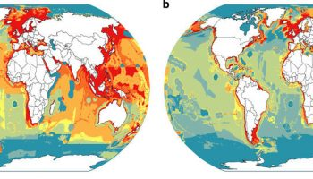 New article on global fisheries between 1950 and 2014